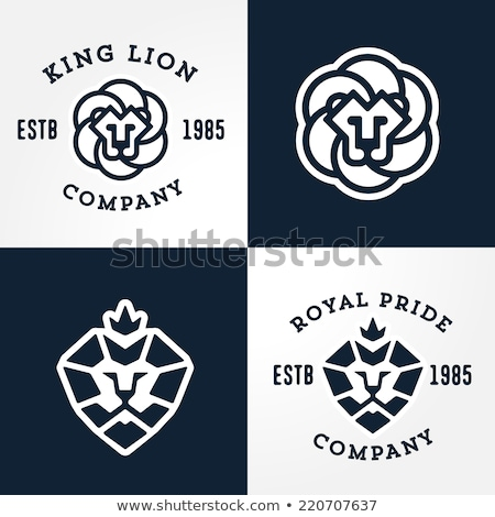 Lion guard Stock photo © sahua