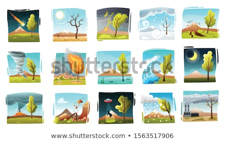 nature · plantes · Rock · asphalte · fantastique · herbe - photo stock © Alvinge