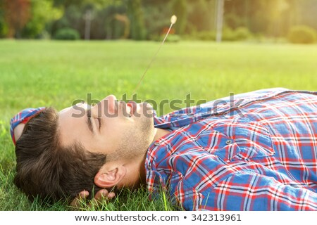Man chewing a blade of grass in the park Stock photo © photography33