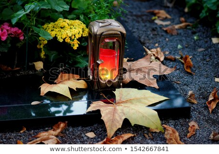 Tombstone and autumn leaf Stock photo © Elenarts