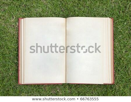 Otwarte dziennik zielona trawa działalności biuro trawy Zdjęcia stock © Archipoch