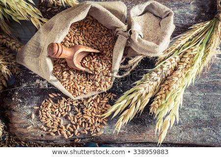 Egész gabona liszt fából készült edény háttér Stock fotó © gorgev