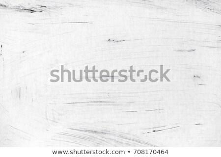 белый холст масляная краска текстуры аннотация дизайна Сток-фото © photosil