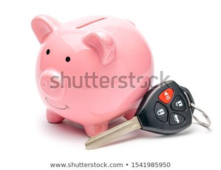 банка · ключами · пару · экономия · текущий · счет - Сток-фото © Sniperz
