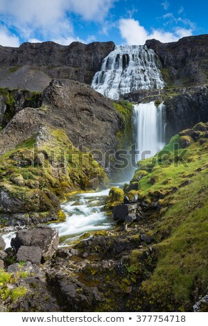 dynjandi waterfall and rapid river   iceland stock photo © tomasz_parys
