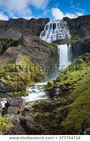 滝 急速 川 アイスランド 表示 ビッグ ストックフォト © tomasz_parys