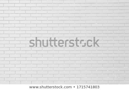 Foto d'archivio: Vecchio · intemperie · bianco · verniciato · muro · di · mattoni