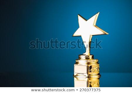 vezető · csillag · csillagok · irányítás · politika · üzlet - stock fotó © lightsource