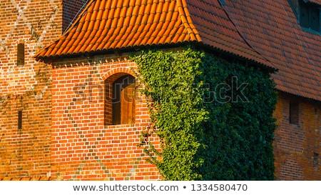 Foto stock: Estanho · telhado · textura · edifício · azul · vermelho