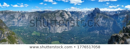 half dome and yosemite valley view from glacier point in summer stock photo © snyfer