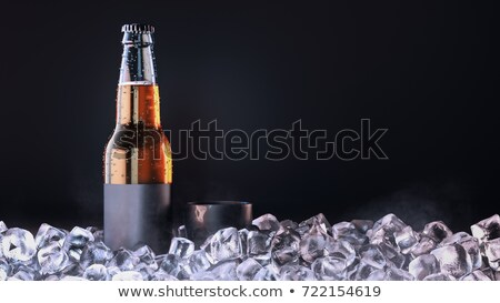 Banner with cold bottle of beer is in ice Stock photo © ikopylov