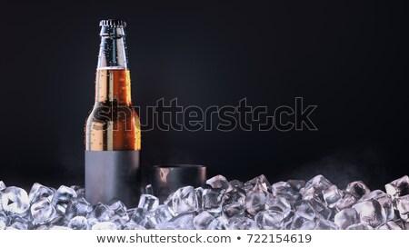 bière · verre · isolé · blanche · boire · or - photo stock © ikopylov