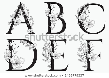 klasszikus · virágmintás · ábécé · o · betű · sziluett · antik - stock fotó © ray_of_light