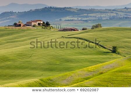 Landscape near Pienza Stock photo © w20er