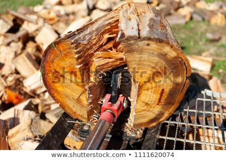 гидравлический древесины мнение зола работу Сток-фото © creisinger