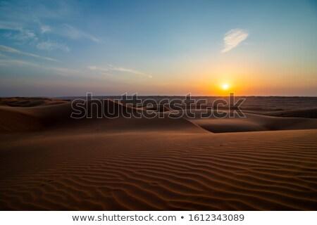 Sivatag tábor Omán zöld bokrok felhők Stock fotó © w20er