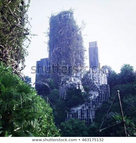 Jungle Fear Stok fotoğraf © denisgo