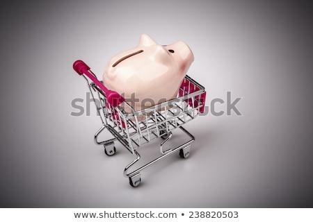 pig money box in shopping cart on white background stock photo © jarin13
