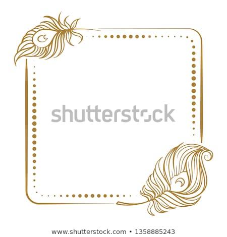 Illusztráció arany dísz páva toll űrlap Stock fotó © yurkina