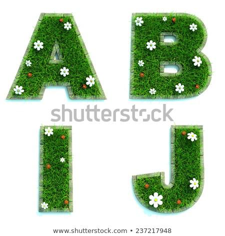 letters a b i j as lawn   set of 3d stock photo © tashatuvango