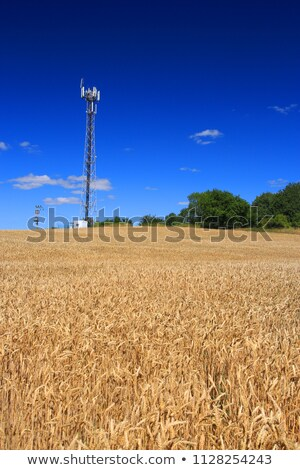 TV and GSM Transmitter Stock photo © Kayco