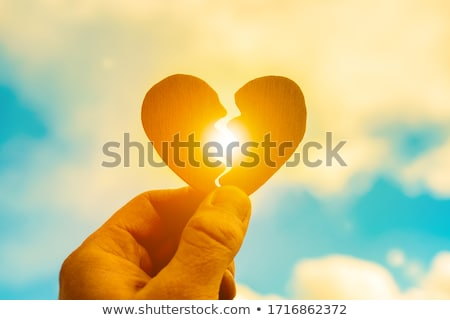 összetört · szív · művészet · szeretet · szív · élet · tégla - stock fotó © stevanovicigor