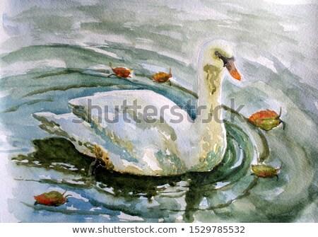 swan art Stock photo © tracer