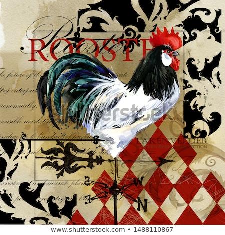 鶏 オンドリ 水彩画 セット 芸術 ファーム ストックフォト © artibelka