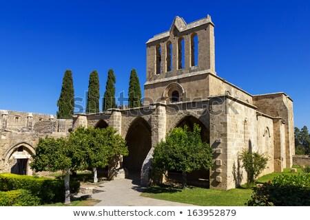 Middeleeuwse abdij Cyprus hemel boom gebouw Stockfoto © Kirill_M