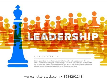 The new chief (chess metaphor) Stock photo © grechka333