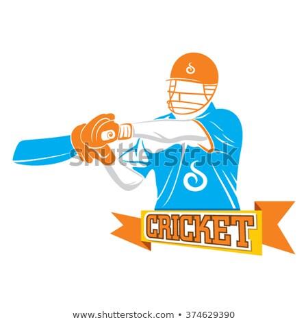 Foto stock: Vetor · críquete · jogar · tiro · desenho · animado · segurança