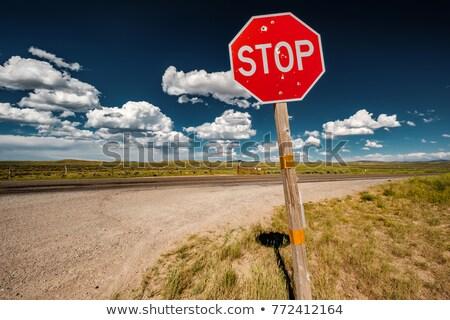Sinal de parada bala país vandalismo Alasca sinais de trânsito Foto stock © cboswell