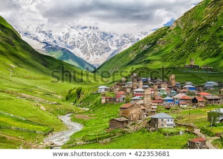 Górskich w. Gruzja lata krajobraz kaukaz Zdjęcia stock © Kotenko
