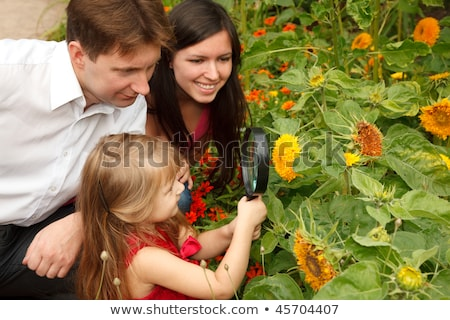 Little girl in red dress considers flower together with parents through magnifying glass. stock photo © Paha_L