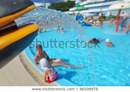 噴水 フォーム おもちゃ イルカ プール アクアパーク ストックフォト © Paha_L