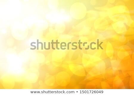 Czerwony żółty bokeh efekt jasne światła Zdjęcia stock © lubavnel