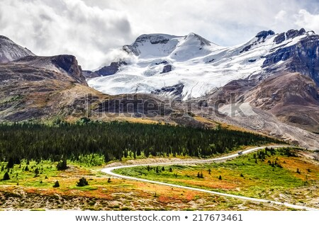 Columbia Icefields Alberta Rocky Mountains Stock photo © pictureguy