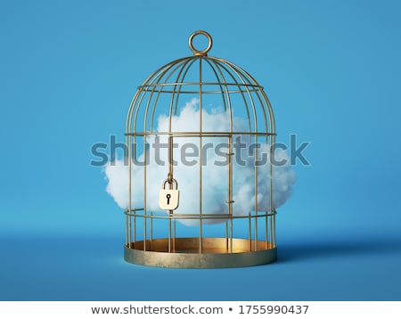 A blue cage Stock photo © bluering