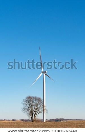solitary windmill Stock photo © pedrosala