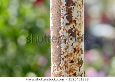 Rusty pole in water Stock photo © Digifoodstock