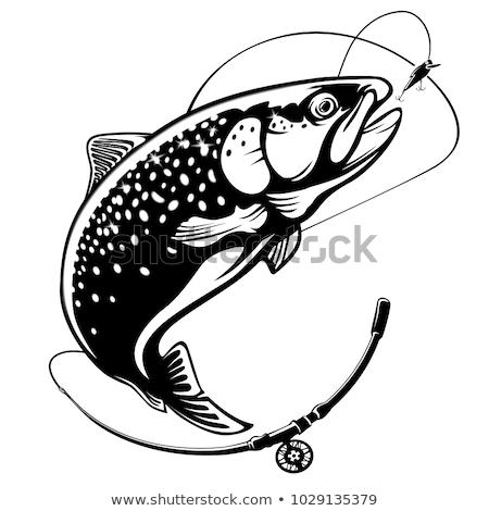 Truta pescaria vintage fora voar Foto stock © tab62