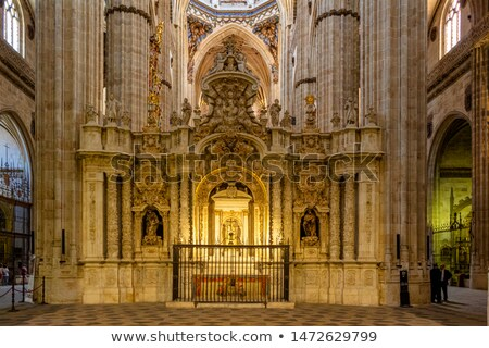 choir new cathedral of salamanca spain stock photo © photooiasson
