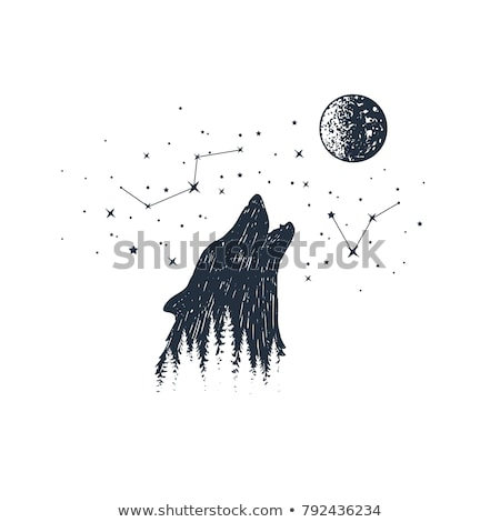 Howling wolf in fir tree forest, vector Stock photo © beaubelle