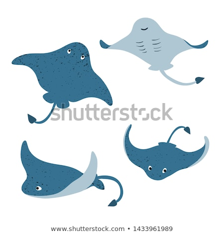 set fish sea animal stock photo © orensila