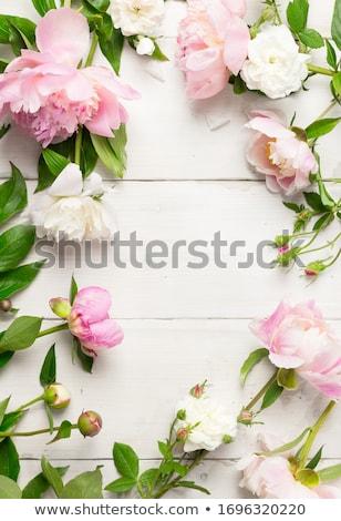 bloemen · menu · textuur · achtergrond · bladeren - stockfoto © bluering
