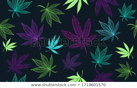 marihuana pattern background Stock photo © hayaship