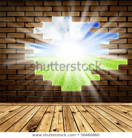 Stockfoto: Summer Meadow Through The Hole In The Brick Wall