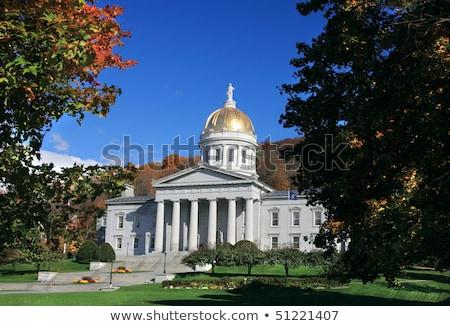 EUA Vermont bandeira branco ilustração 3d textura Foto stock © tussik