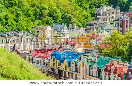 Renkli Ukrayna üst görmek eski moda bölge Stok fotoğraf © joyr