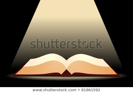 Blank Paged Book Open Spotlight Stock photo © albund